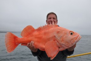 Steven Luft 25 pounds