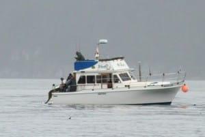 boat9
