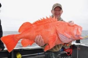 Paul Strommen 21 lbs. 6-4-16 (1)